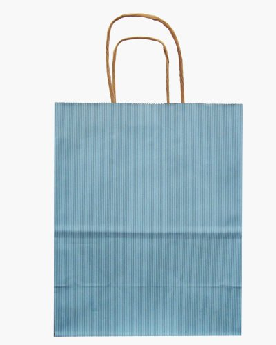 Jillson Roberts Bulk Recycled Medium Kraft Bags, Pastel Blue, 250-Count (BMK901)
