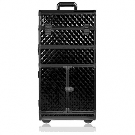SHANY Rebel Series Pro Makeup Artists Rolling Train and Trolley Case, Curious Black Cat