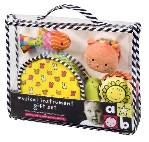 Amazing Baby: Musical Instrument Set by Kids Preferred