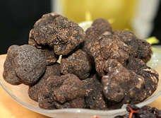 Perigord Black Truffles, 1 oz