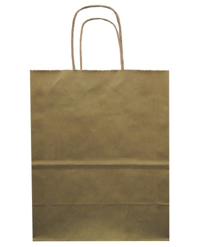 Jillson Roberts Bulk Medium Recycled Kraft Bags, Gold Metallic, 250-Count (BMK915)