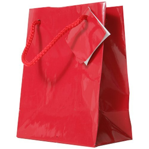 JAM Paper® – Small Red Glossy Gift Bag (4 x 5 1/2 x 2 1/2) – 100 bags per box