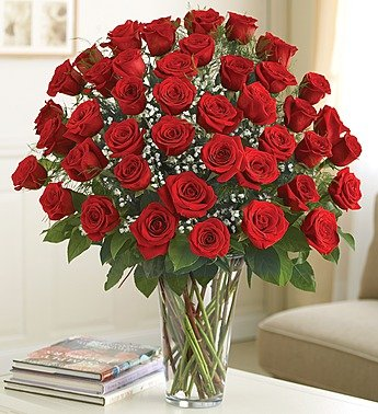 1-800-Flowers – Ultimate Elegance Premium Long Stem Red Roses – 48 Stem Red…