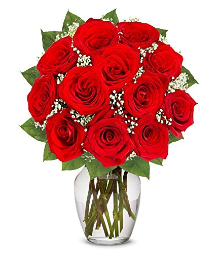 Valentine's Day Flowers – One Dozen Long Stemmed Red Roses (FREE Vase Included)