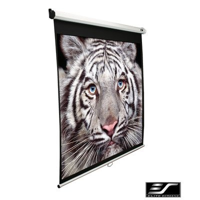 Elite Screens Manual SRM Series, Slow Retract Pull Down Projection Screen, 120-inch Diagonal 16:9, M