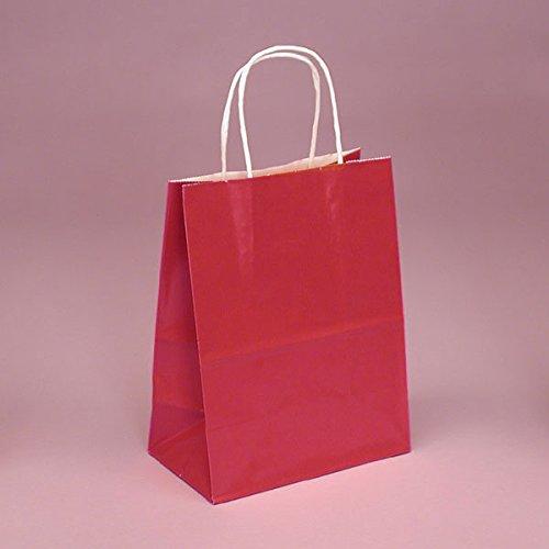 Bags – 250ea – Red Glossy Handle Bags