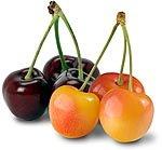 4 lbs Washington Dark Red and Rainier Sweet Cherries