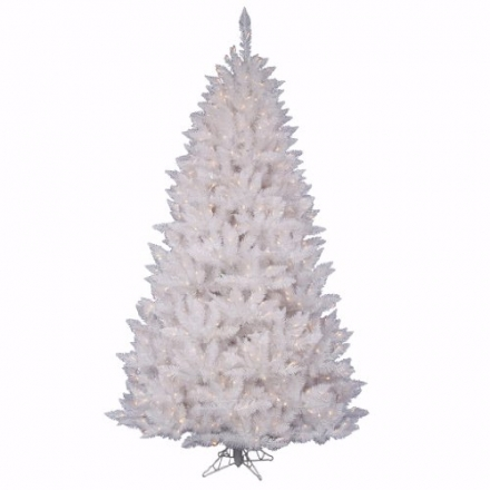 Vickerman A104186 9.5 ft. x 64 in. White Spruce Dura-Lit 1050CL