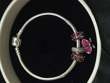 Pandora Loving Radiant Orchid Charm and Ruby Spacers Gift Set 791307