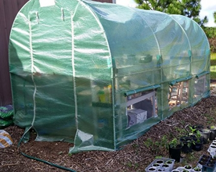 Mother's Day Sale Limited Qty! Quictent® 12′ X 7′ X 7′ Portable Greenhouse Large Walk-in Green Gard