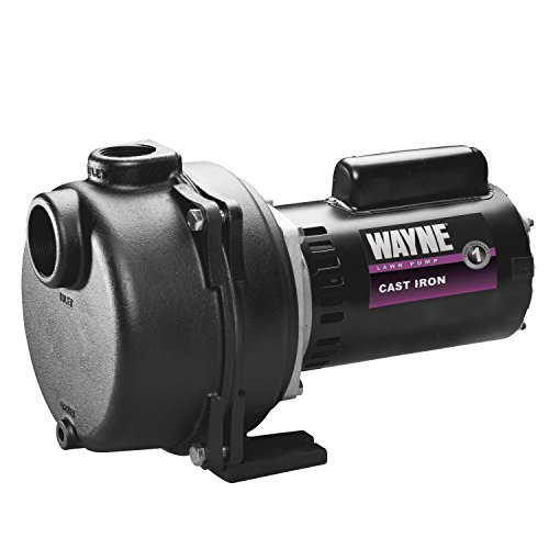 WAYNE WLS200 2 HP Cast Iron High Volume Lawn Sprinkling Pump