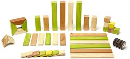 42 Piece Tegu Magnetic Wooden Block Set, Jungle